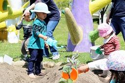 20210415_元気の木保育室 夏野菜の苗植え (46)