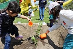 20210415_元気の木保育室 夏野菜の苗植え (44)