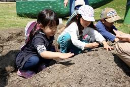 20210415_元気の木保育室 夏野菜の苗植え (34)