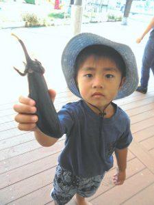 菜園活動 (109)